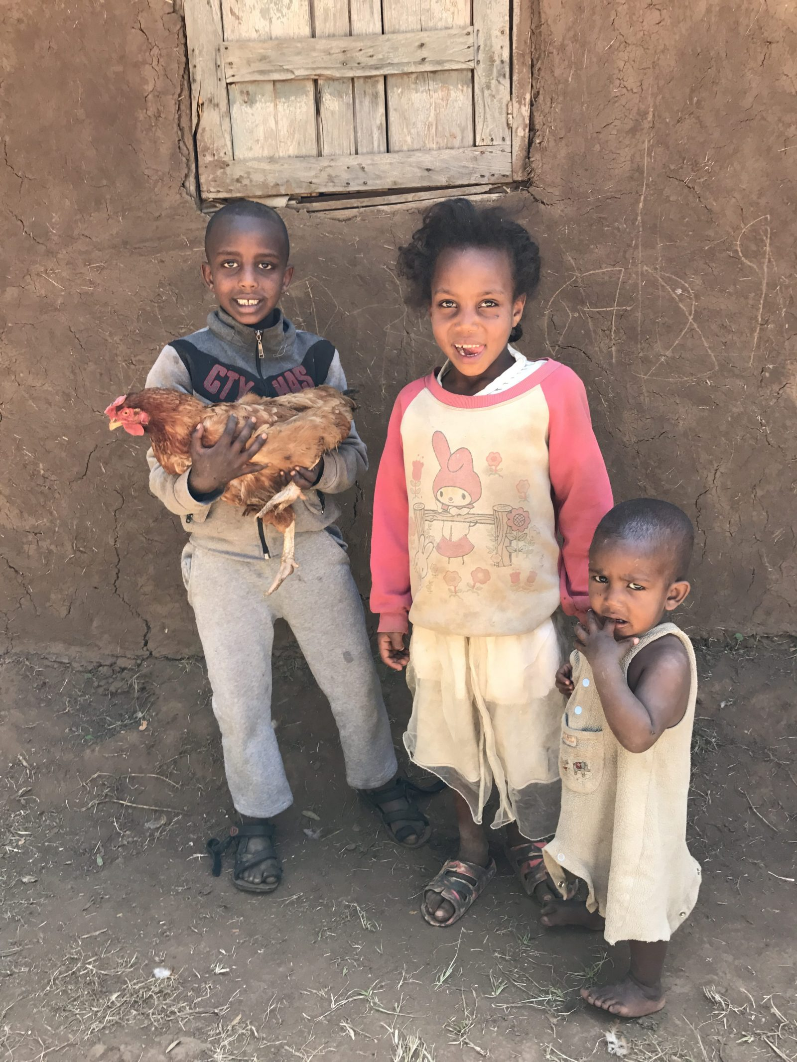 Betsega: A Boy's Day in Ethiopia